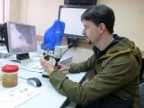 Manu untersucht die Plattwuermer