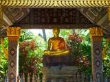 …und Buddhastatuen gibt es von klein bis gross, alt oder neu in unüberschaubaren Mengen.