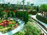 Auch der Flowerdome weiss zu beeindrucken. In seiner Vielfalt und Groesse...
