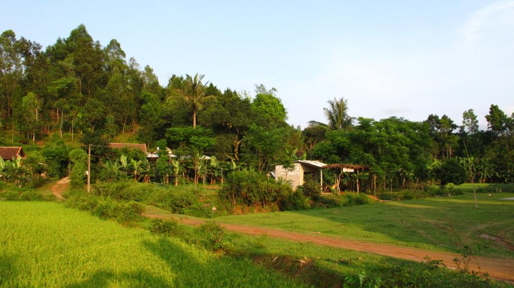 Idyllisch liegt die Pepperhouse Homestay zwischen den Reisfeldern_IMG_2437