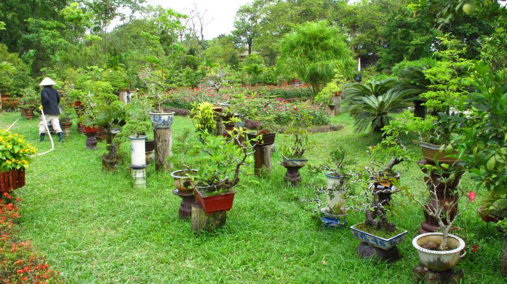 wird von geduldigen Gärtnern gehegt und gepflegt_IMG_2474