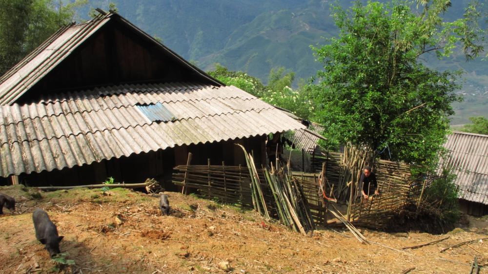 wo Papa-Tee gerade den Bambuszaun repariert_IMG_1763