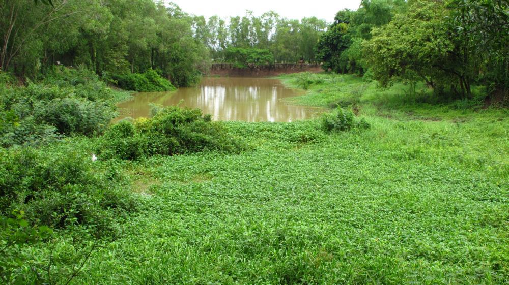 Die Idylle trügt! Unter diesem Feld und dem See befinden sich immer noch Massengräber_IMG_3706