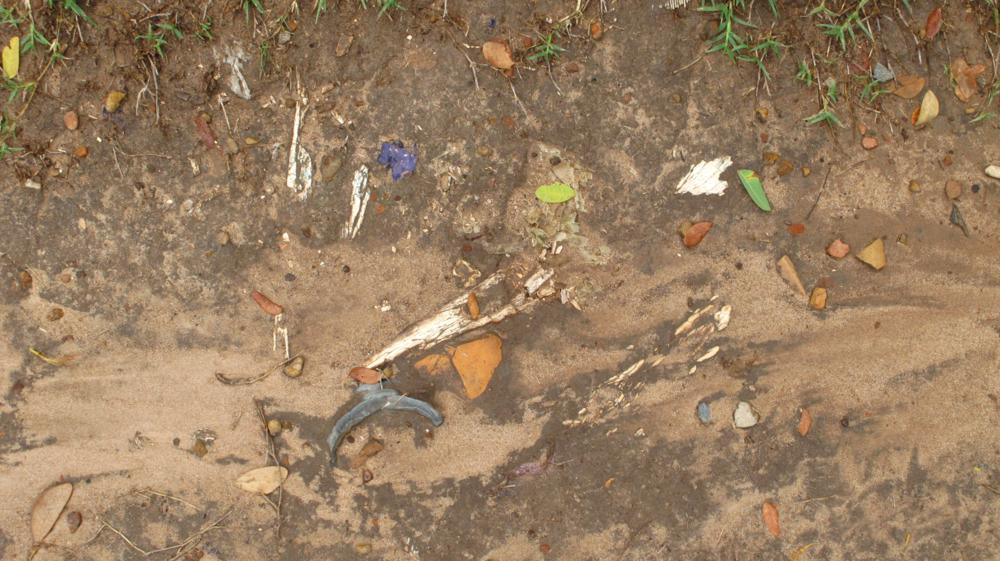Nach dem Regen kommen am Boden Knochenfragmente zum Vorschein_IMG_3714