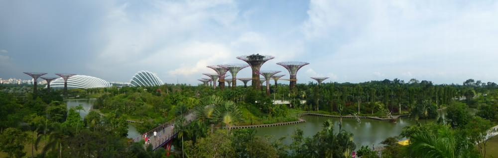 Supertrees mit den beiden Domes in den Gardens by the Bay_P1070812